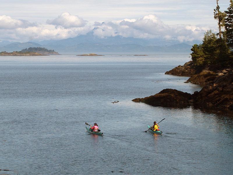 Kayaking Johnstone Strait