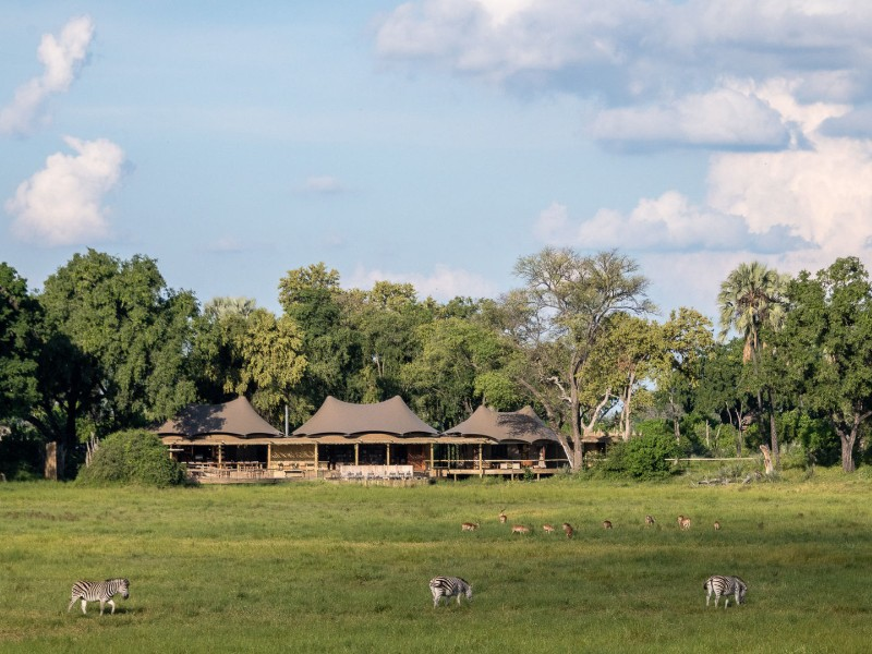 Mombo Camp - Moremi Game Reserve, Botswana
