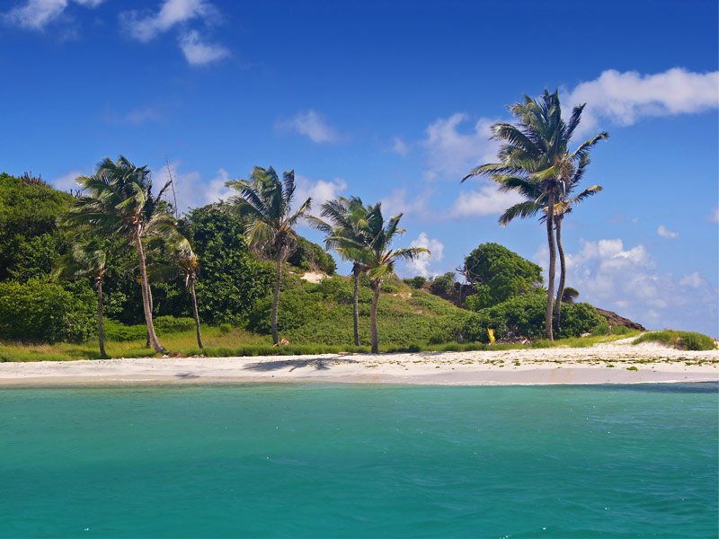 Petit Tabac,Tobago Cays