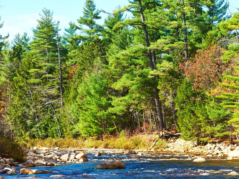 White Mountain National Forest – New Hampshire