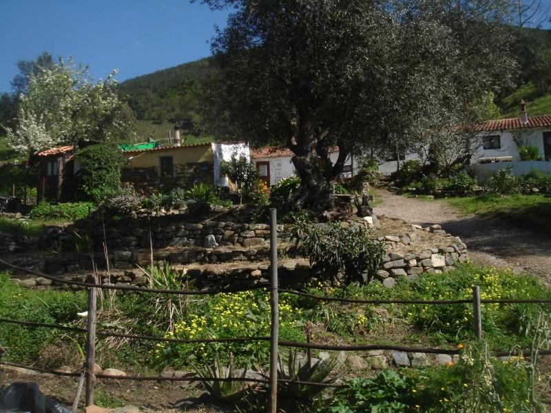 Varzea da Goncala