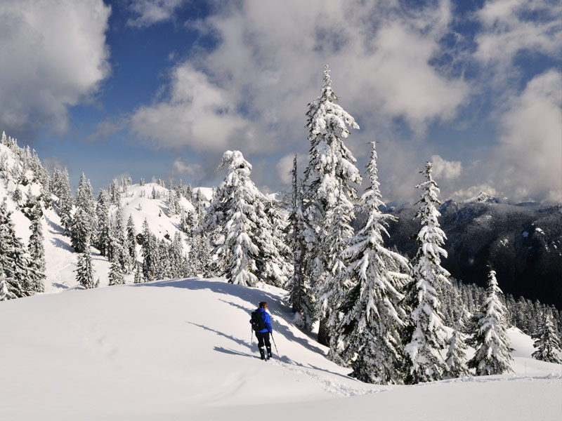 Mt. Seymour – British Columbia, Canada