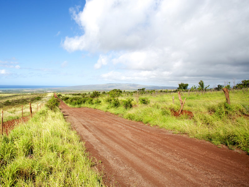 Molokai Forest Reserve Road, Hawaii