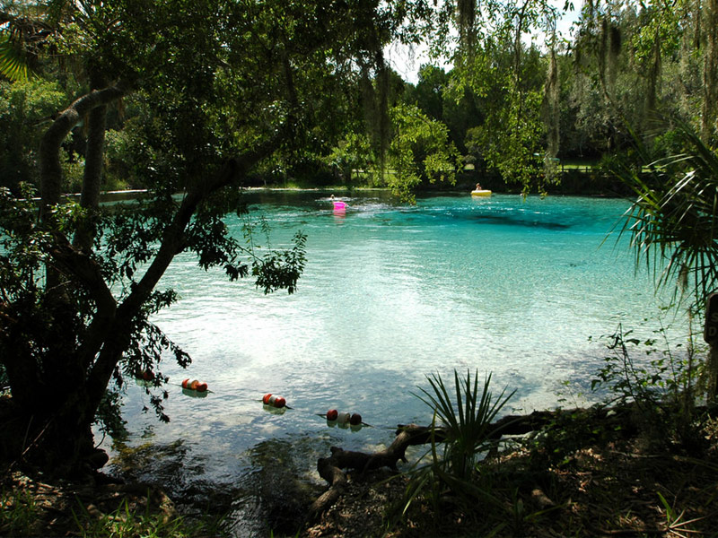 Silver Glen Springs, Ocala National Forest