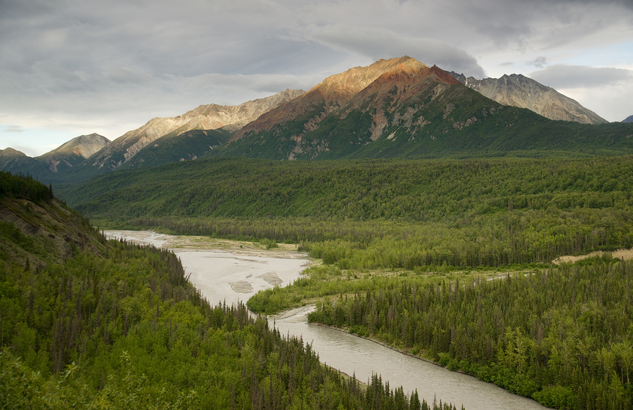 Matanuska River, Chugach State Park