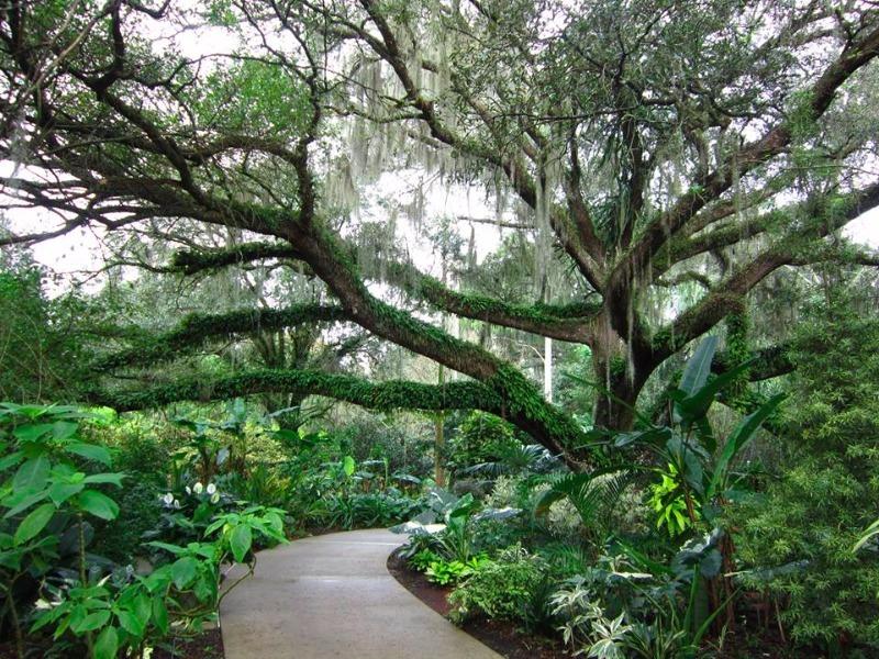 Harry P. Leu Gardens