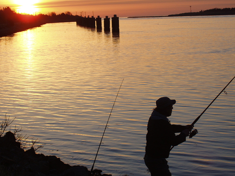 Fishing in the Cape Cod Canal