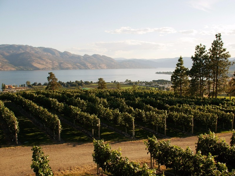 Kelowna & the Okanagan Valley