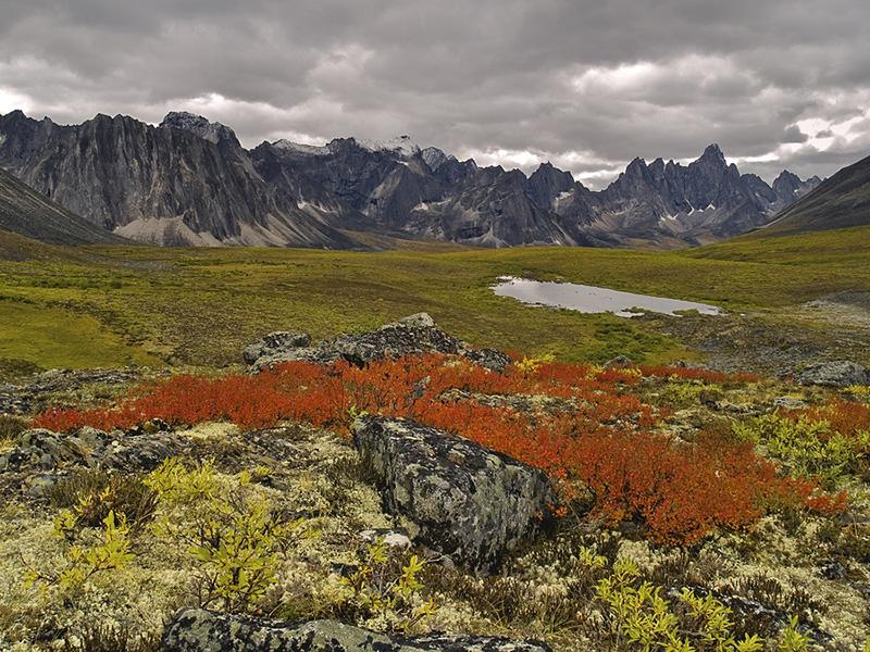 Tombstone Pass, Yukon