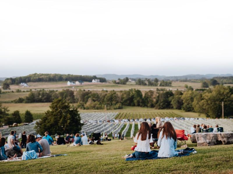 Arrington Vineyards outside Franklin, Tennessee