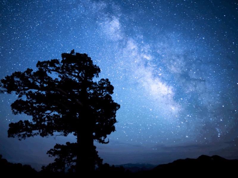 dark starry night in Tonopah, Nevada