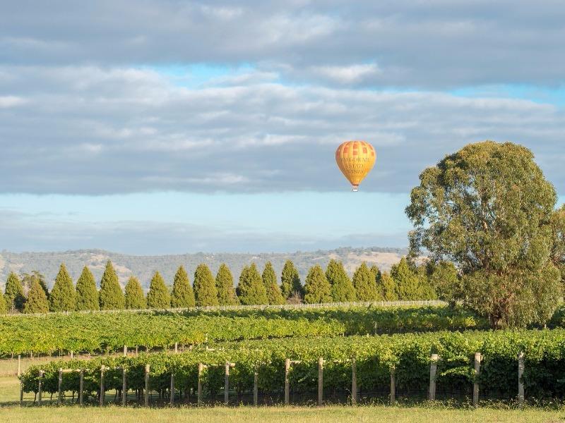 Yarra Valley, Australia hot air balloon