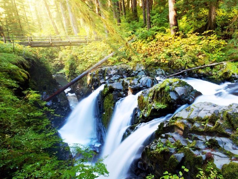 Sol Duc Falls, Hoh Rainforest, Olympic National Park, Washington