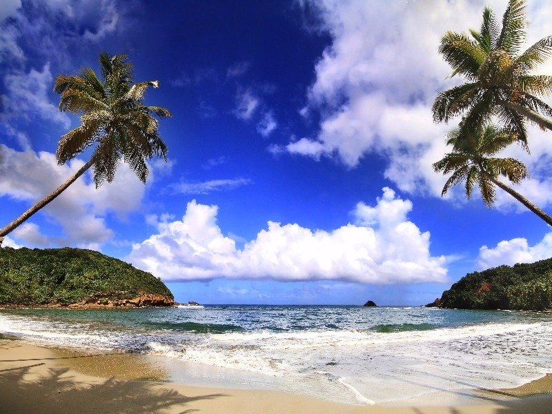 beautiful beach in a secluded cove on Dominica