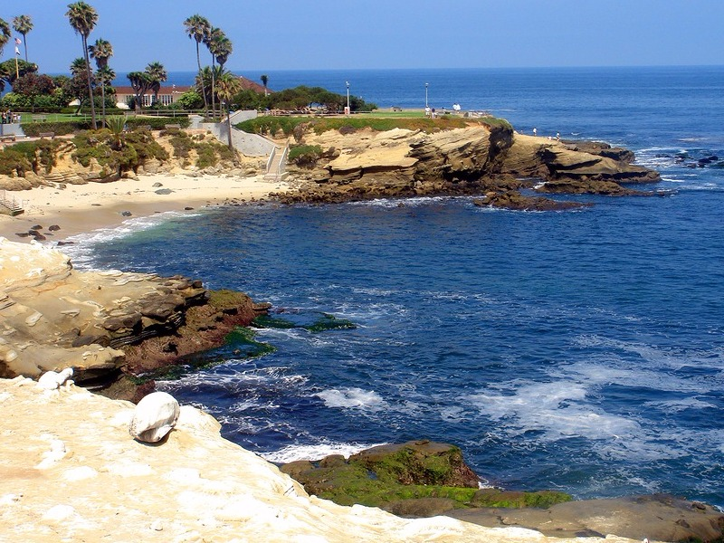 Beach and cove in La Jolla