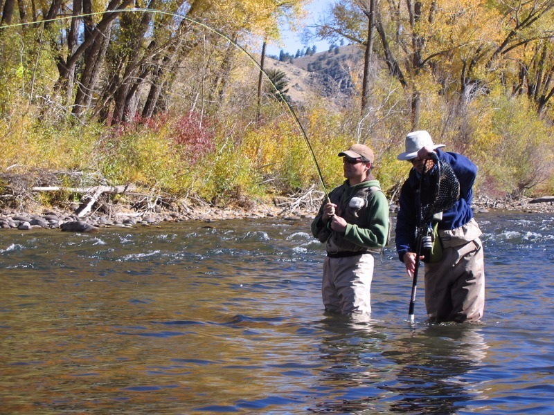 fly fishing on the Gunnison River, Colorado