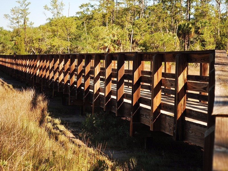 A wooden bridge provides hikers a raised path over the marsh at Skidaway Island State Park