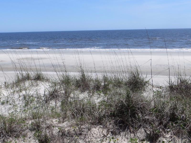 Beach at Sapelo Island