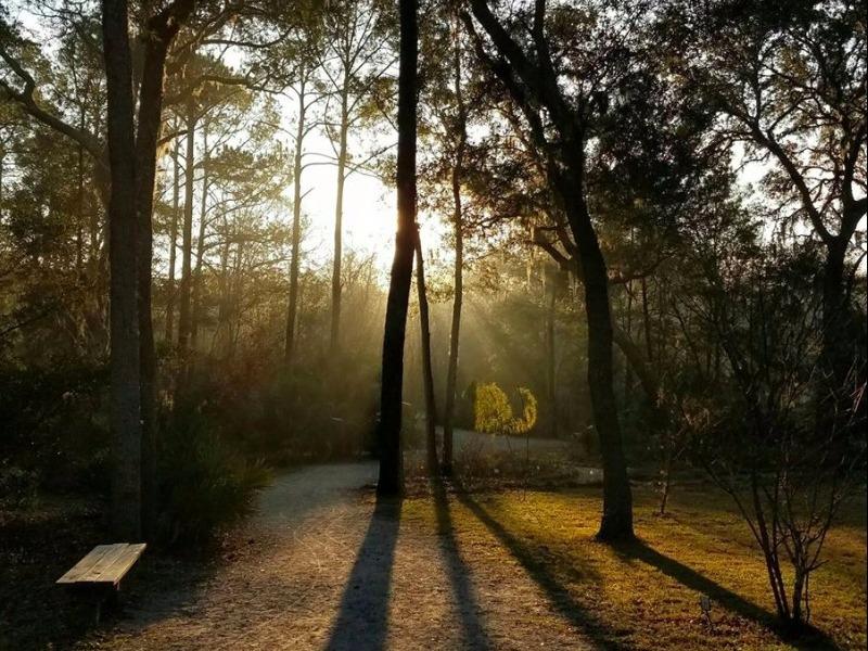 Jacksonville Arboretum & Gardens
