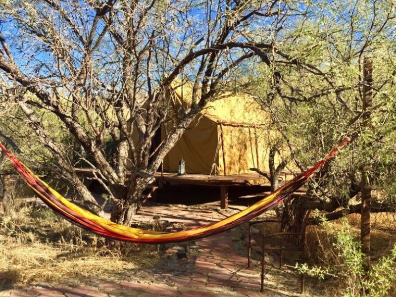 Raven's Nest Nature Sanctuary glamping