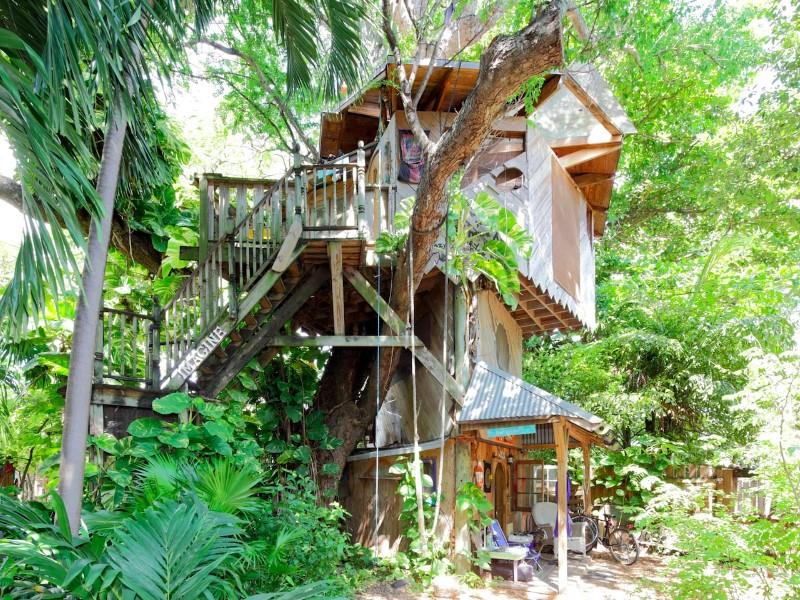Treehouse Canopy: Permaculture Farm, Miami