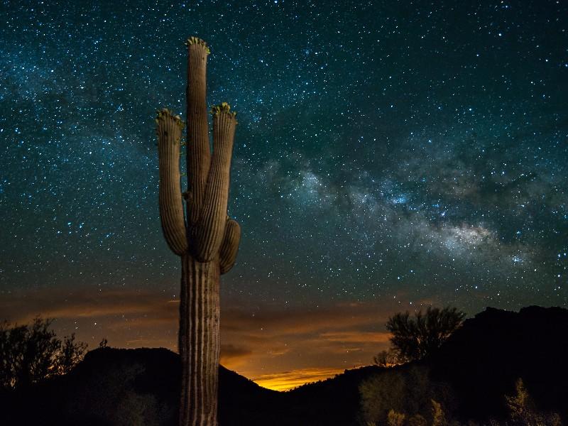 Starry night and Milky Way over the Arizona desert