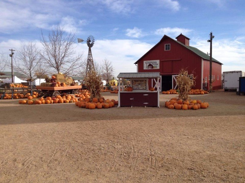 Anderson Farms, Erie, Colorado