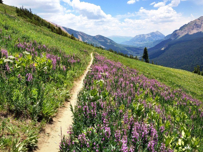 401 trail, Crested Butte