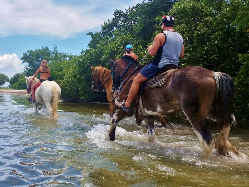 Cypress Breeze Farm Trail Riding, Pinellas Park