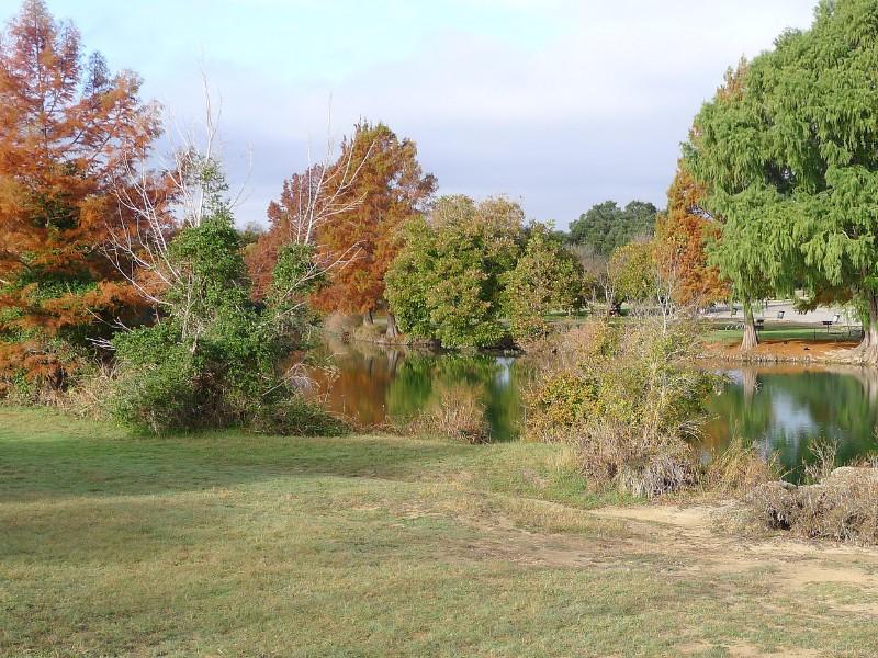 Fall foliage at Blanco State Park