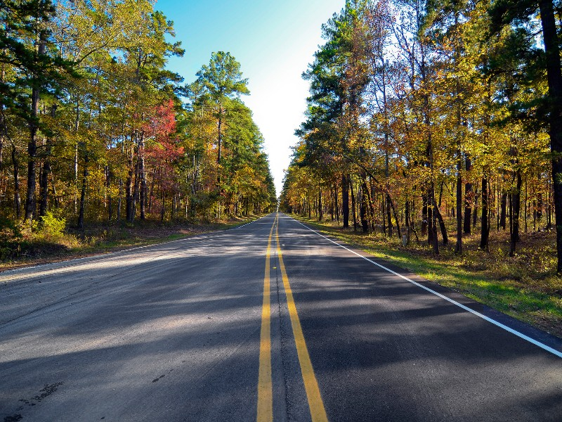 Scenic drive in East Texas