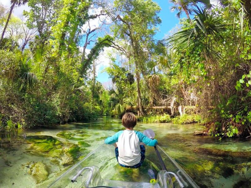 Get Up and Go Kayaking, Orlando