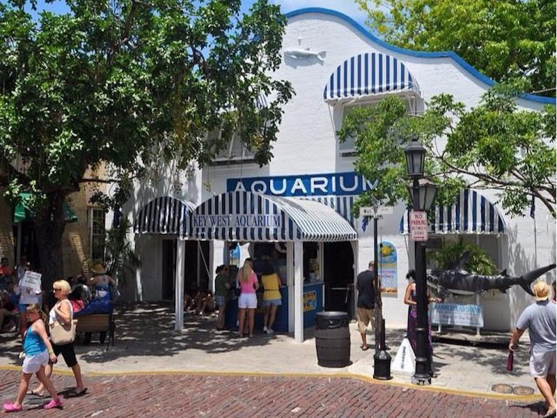 Key West Aquarium, Key West