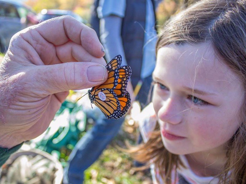 Programs from the park's partners offer additional education for visitors.