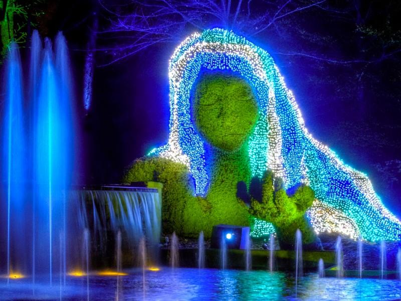 Atlanta Botanical Gardens2 - Atlanta Botanical Gardens Light Show Promo Code