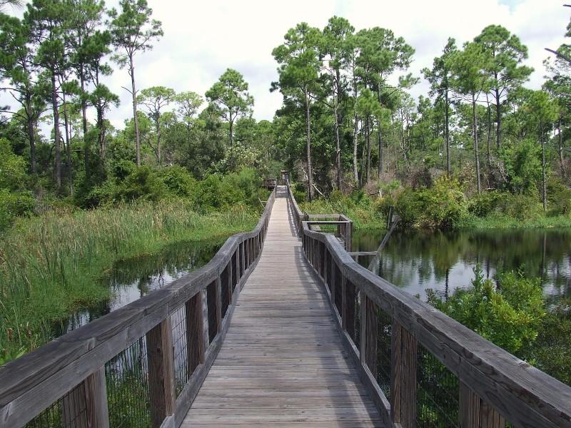 Boardwalk in Big Lagoon State Park