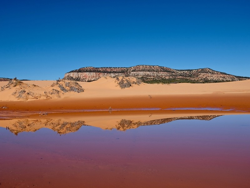 Reflection of sand dunes in Coral Pink Sand Dunes State Park