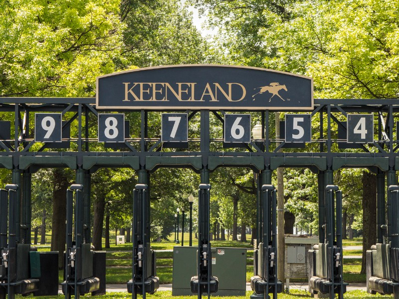 Starting gate at the world renowned Keeneland Thoroughbred Racing Track in Lexington, Kentucky.