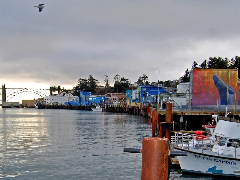 Coastal scene of Newport, Oregon