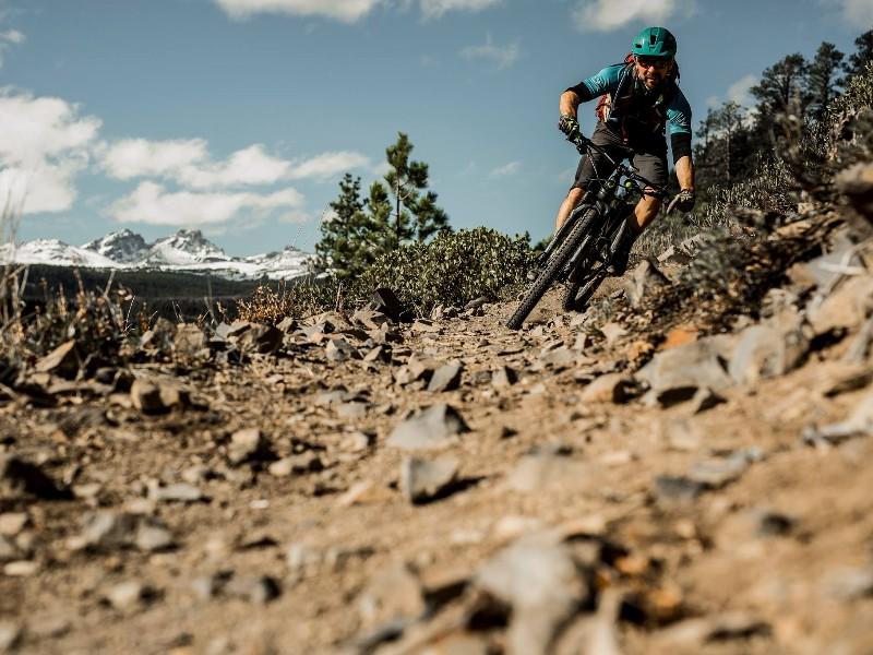Mountain biking with Cog Wild Mountain Bike Tours & Shuttle