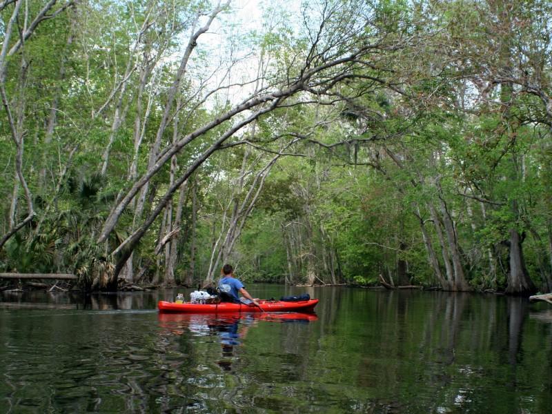Kayaking near Anna Maria Island