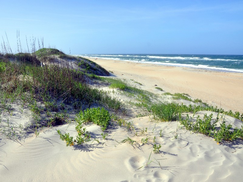 Sand Dune in Cape Hatteras National Seashore, on Hatteras Island, North Carolina