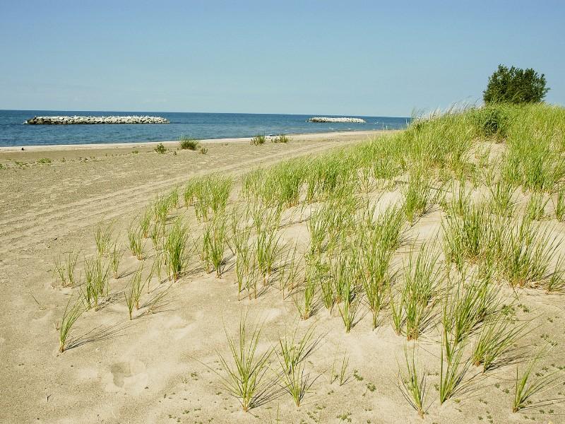 Beach at Presque Isle State Park