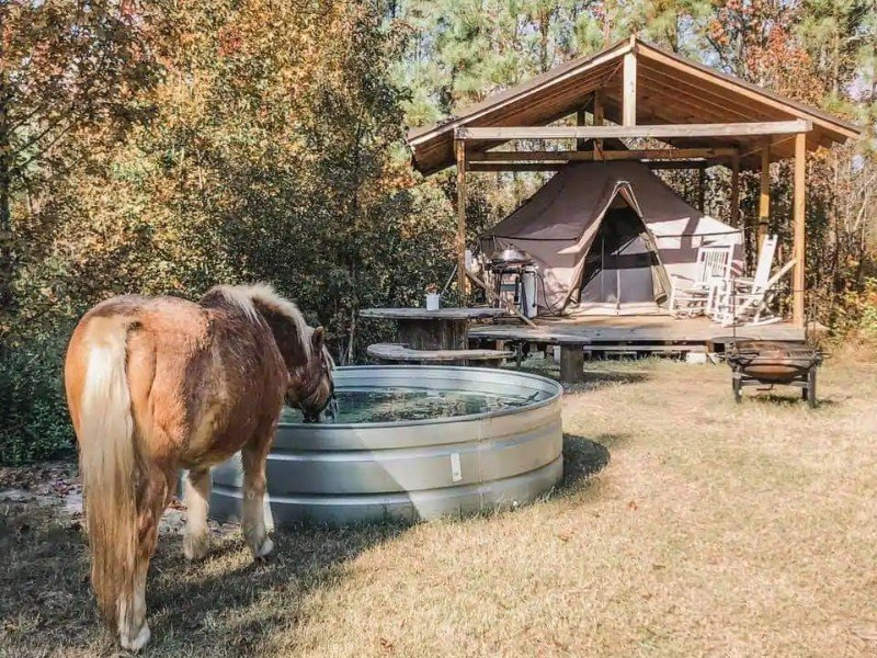 Glamping on an Off-Grid Farm