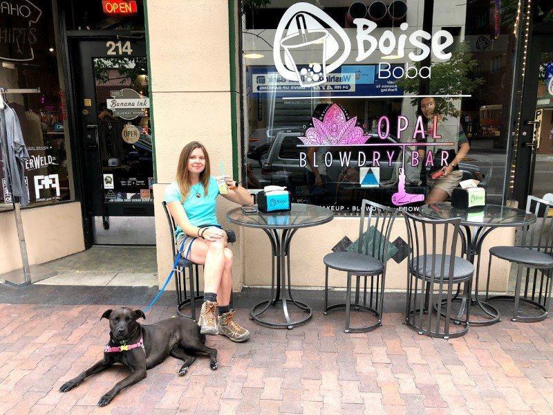 Boba tea with a dog in Boise