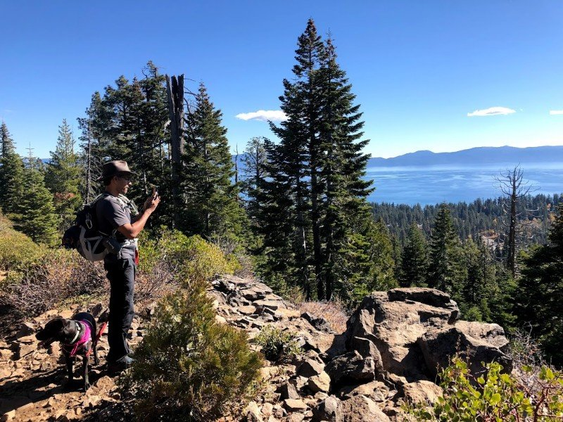 Photography with a dog at Lake Tahoe