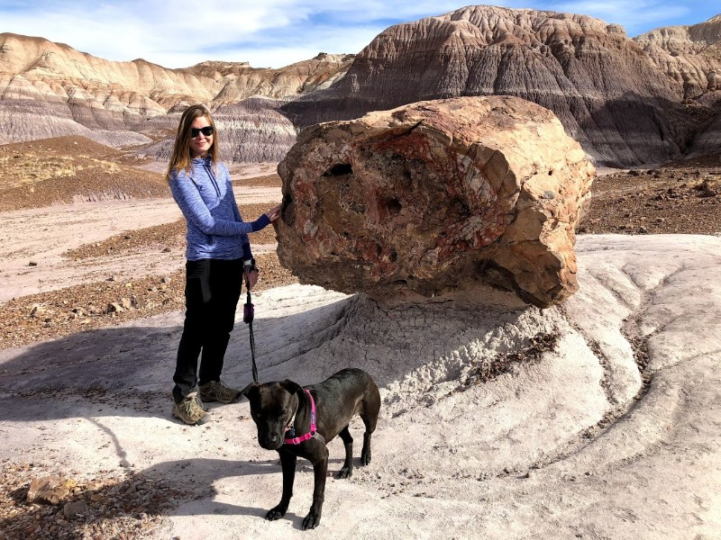 Hiking with a dog in the Petrified Forest