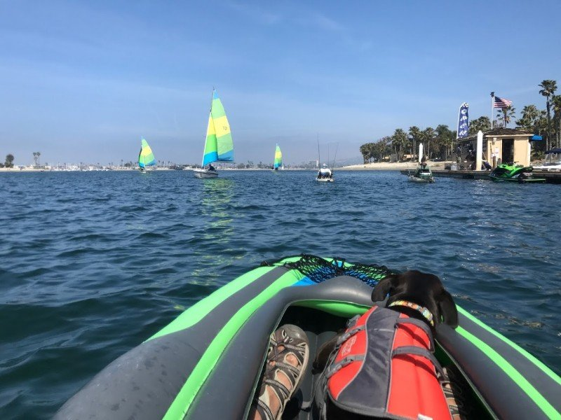Kayaking with a dog in San Diego