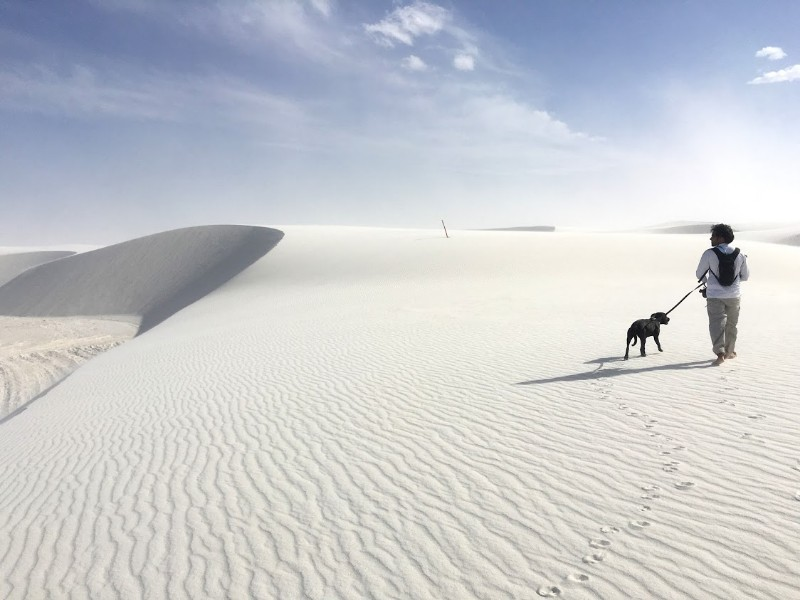 White Sands National Monument with a dog