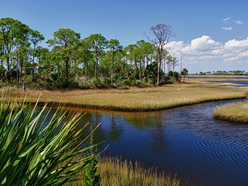 Everglades City is the capital of Florida's swamp lands and is home to Everglades National Park.